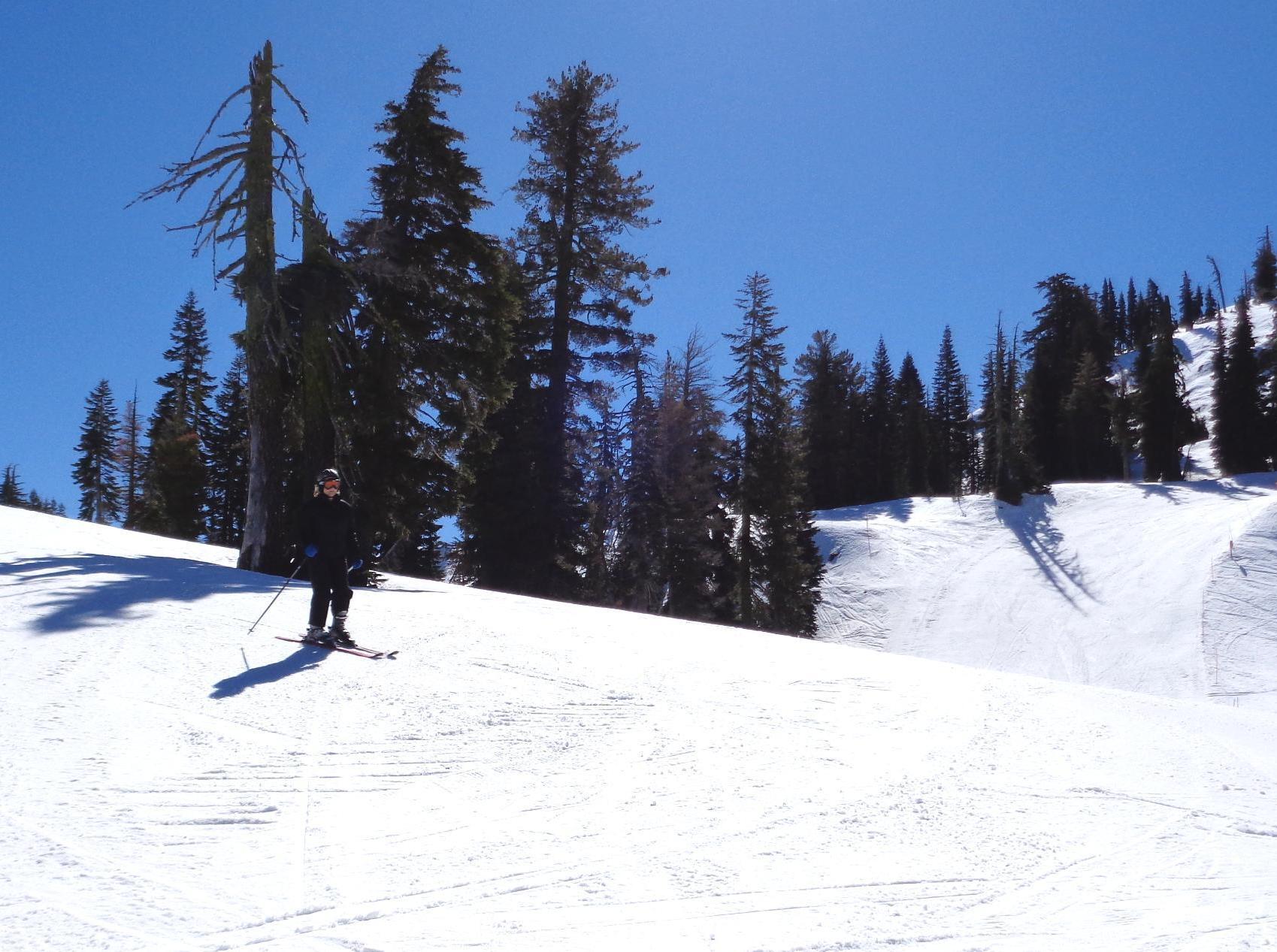 Sugar Bowl Staion B trail