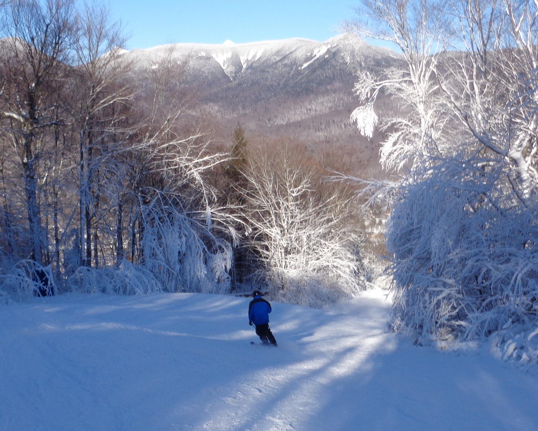 Loon's Blue Ox Snow