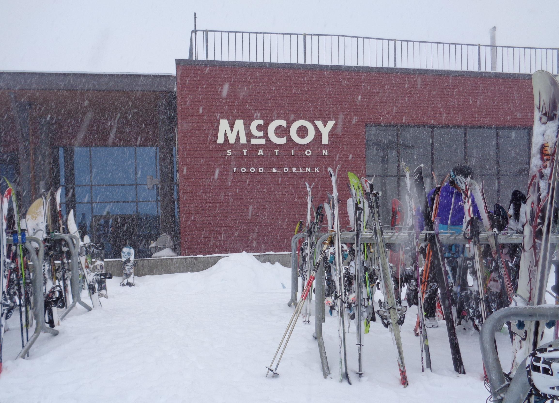 McCoy in snow