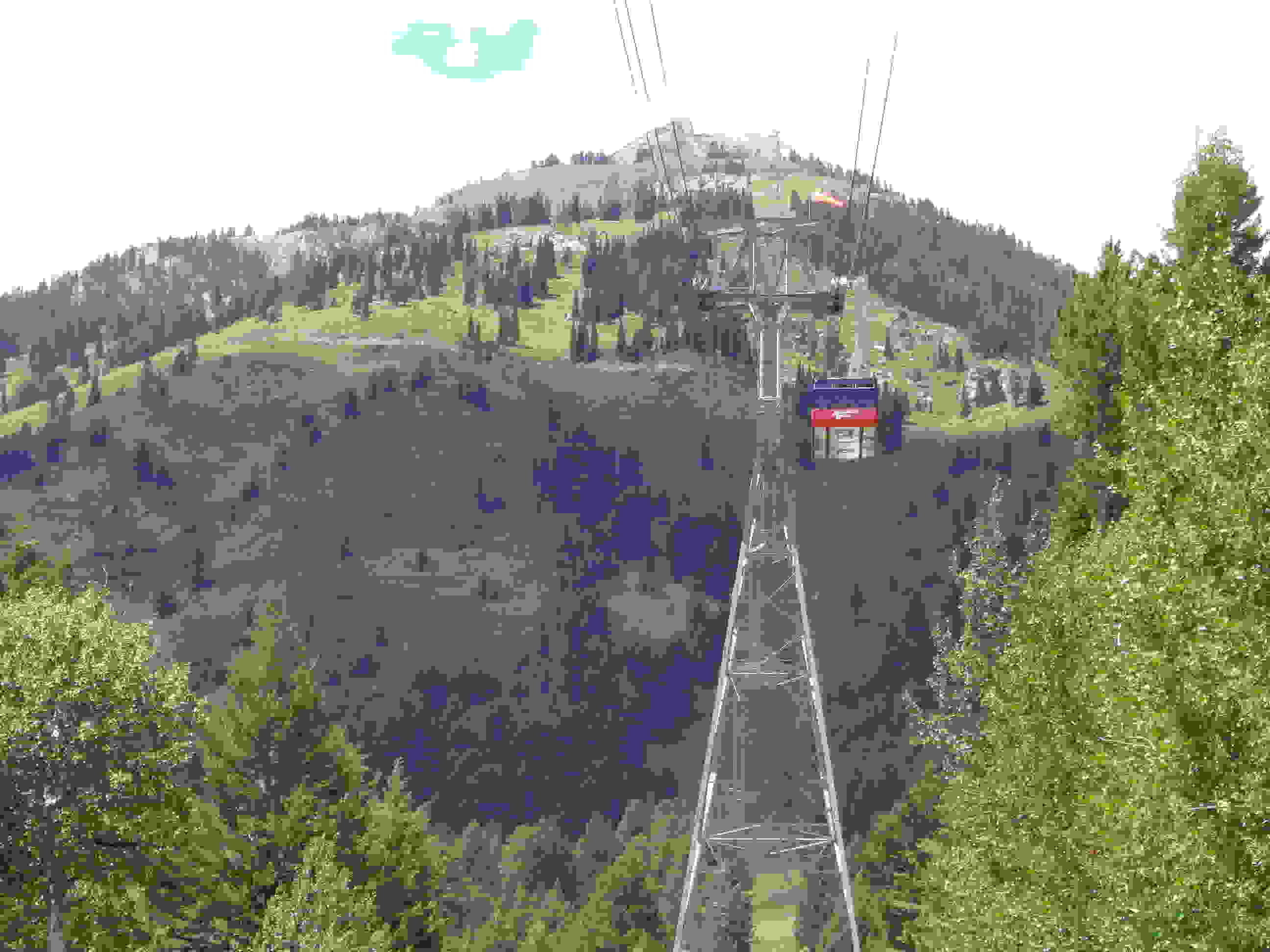 JHMR Tram & Trails